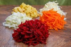Verduras peladas crudas para la sopa Imagenes de archivo
