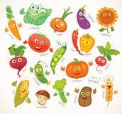 Verduras Personaje de dibujos animados divertido Imágenes de archivo libres de regalías