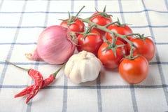 Verduras, pimienta, ajo, cebolla, tomates en el paño ajustado, st Foto de archivo libre de regalías