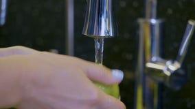 Verduras que se lavan de la mano femenina en agua del grifo metrajes