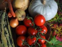 Verduras rústicas del otoño/del invierno de la cosecha Foto de archivo