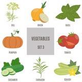 Verduras Sistema 3 Fotografía de archivo libre de regalías