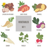 Verduras Sistema 1 Fotografía de archivo