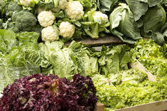 Verduras verdes Foto de archivo libre de regalías