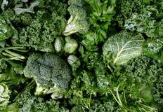 Verduras verdes Fotografía de archivo libre de regalías