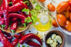 Verduras y adzhika de la salsa Imagen de archivo