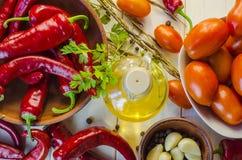 Verduras y adzhika de la salsa Imagen de archivo libre de regalías