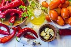 Verduras y adzhika de la salsa Fotografía de archivo