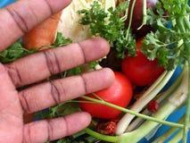 Verduras y arte culinario Imágenes de archivo libres de regalías