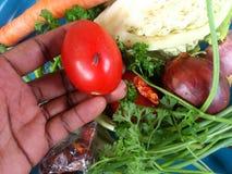 Verduras y arte culinario Fotos de archivo libres de regalías