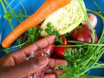 Verduras y arte culinario Foto de archivo libre de regalías