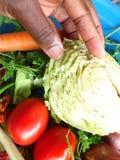 Verduras y arte culinario Fotografía de archivo