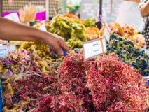 Verduras y flores fritas Foto de archivo