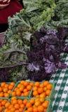 Verduras y fruta del mercado del granjero Imagen de archivo