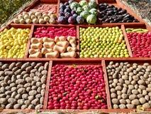Verduras y frutas - cosecha del otoño fotos de archivo