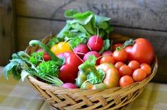 verdure Immagine Stock
