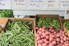 Verdure al mercato degli agricoltori immagine stock libera da diritti