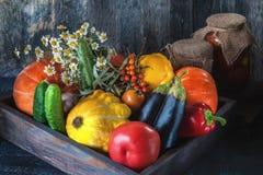 Verdure assortite, zucca, zucchini, melanzana, aglio, cipolle verdi e pomodori su un fondo di legno in rustico Immagini Stock Libere da Diritti