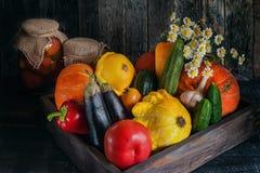Verdure assortite, zucca, zucchini, melanzana, aglio, cipolle verdi e pomodori su un fondo di legno in rustico Immagini Stock