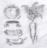 Verdure carota, pomodoro, peperoncini, cetriolo Fotografia Stock