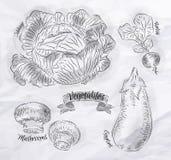 Verdure cavolo, melanzana, ravanelli, funghi Fotografia Stock