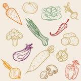 Verdure colorate delle icone Fotografie Stock Libere da Diritti
