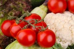 verdure compreso il primo piano dei pomodori, dello zucchini, del cavolfiore e della lattuga Fondo Immagini Stock