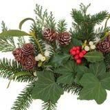 Verdure d'hiver Photo stock