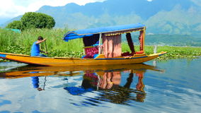 Verdure dans dal Lake-3 Photo stock
