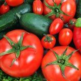 Verdure del cetriolo del pomodoro Fotografie Stock