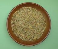 Verdure del legume di grano di impulso delle lenticchie Fotografia Stock Libera da Diritti