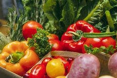 Verdure del mercato Fotografie Stock