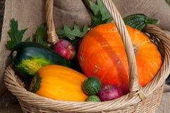 Verdure del raccolto di autunno Immagini Stock