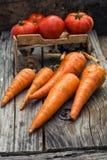 Verdure del raccolto di autunno Fotografia Stock Libera da Diritti