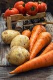 Verdure del raccolto di autunno Fotografie Stock Libere da Diritti