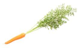 Verdure della carota con i fogli Immagine Stock Libera da Diritti