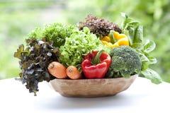 Verdure della miscela Immagini Stock