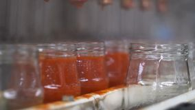 Verdure di giardinaggio e crescente di industria, producenti ketchup archivi video