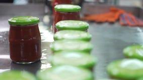 Verdure di giardinaggio e crescente di industria, producenti ketchup video d archivio