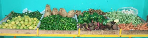 Verdure di MiniGreen Fotografia Stock Libera da Diritti