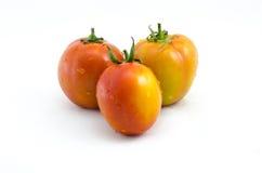 Verdure di Tamatos Immagini Stock