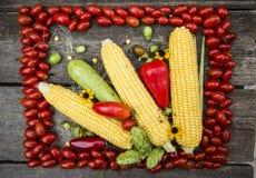 verdure e cereale Fotografia Stock Libera da Diritti