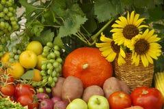 Verdure e frutta immagine stock libera da diritti