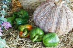 Verdure e frutta/raccolto/autunno Immagini Stock Libere da Diritti
