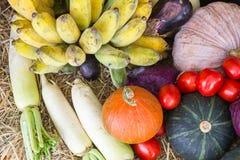 Verdure e frutta/raccolto/autunno Immagine Stock Libera da Diritti