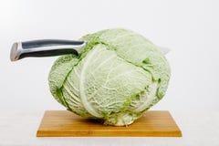 Verdure e frutta sulla pioggia Frutta e verdure nel taglio Immagine Stock Libera da Diritti