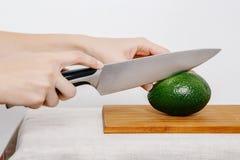 Verdure e frutta sulla pioggia Frutta e verdure nel taglio Fotografia Stock Libera da Diritti