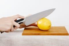 Verdure e frutta sulla pioggia Frutta e verdure nel taglio Fotografia Stock