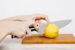 Verdure e frutta sulla pioggia Frutta e verdure nel taglio Fotografie Stock