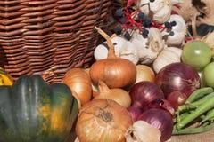 Verdure e mele in un canestro Giorno di autunno nel giardino domestico Alimento sano per la dieta Giorno pieno di sole Immagine Stock Libera da Diritti
